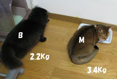 071218a.jpg