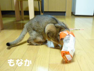 2011_03_26.jpg